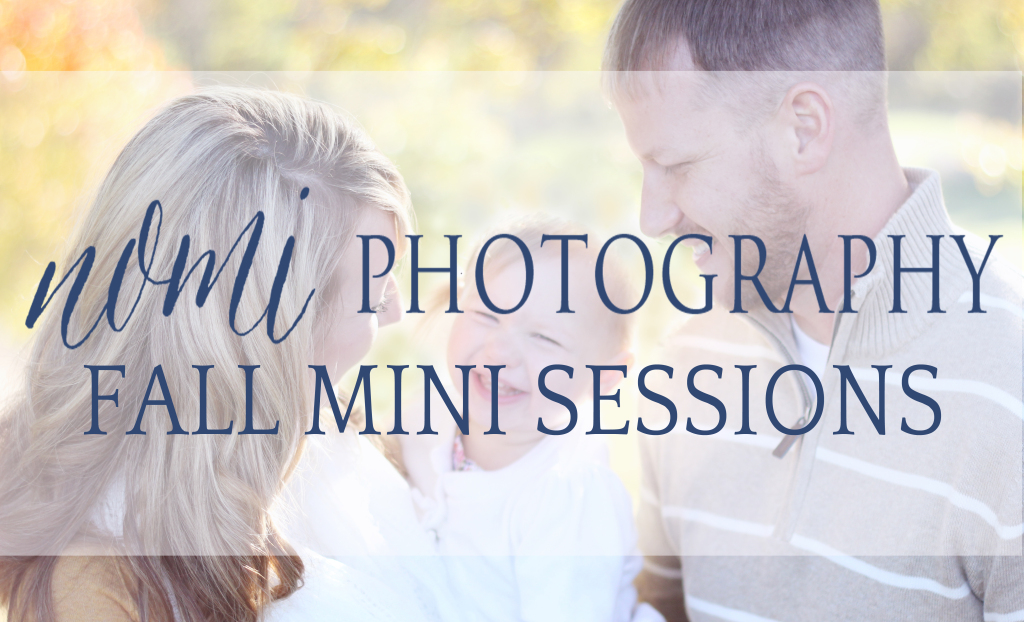 Fall Mini Sessions Ad 2014 banner