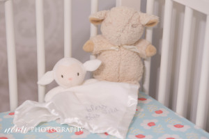DeterdingNewbornSession-2